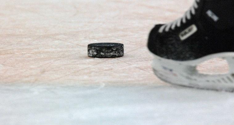 """Češi sledovali hokej na internetu nejvíc v historii. """"Fandí, jen když jejich tým vyhrává."""""""
