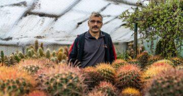 Kampaň za milion: Jak jdou dohromady kaktusy a moderní technologie?