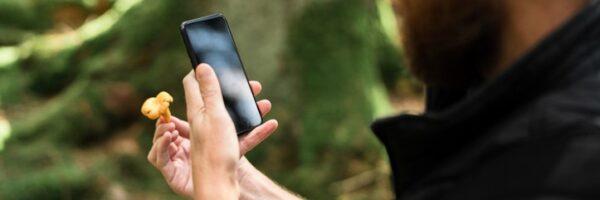 Cool aplikace do mobilu. Ukažte houbám, kdo je tady pánem